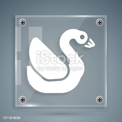 White Swan bird icon isolated on grey background. Animal symbol. Square glass panels. Vector.