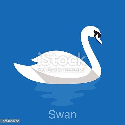 White Swan swimming in the lake, bird series