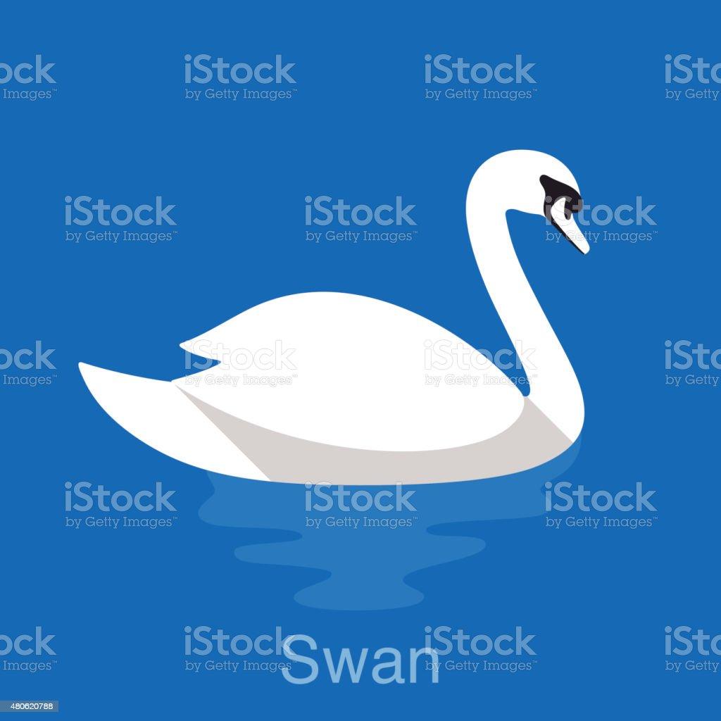 White Swan swimming in the lake, bird series vector art illustration