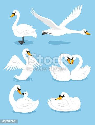 White Swan Wing Water Animal Bird Elegance Grace Set, vector illustration cartoon.