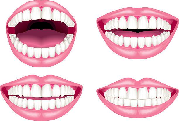 bildbanksillustrationer, clip art samt tecknat material och ikoner med white teeth and lips - tandsten