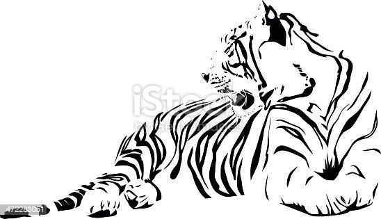 istock White Tiger 472283051