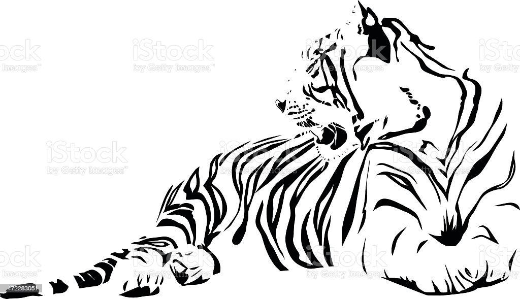 White Tiger vector art illustration