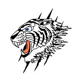 white tiger vector