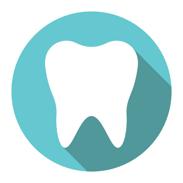 illustrazioni stock, clip art, cartoni animati e icone di tendenza di white tooth, flat design - denti