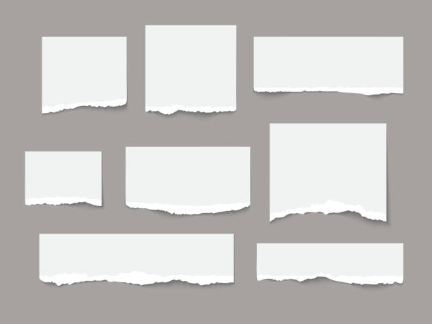 White torn paper tears pieces collection isolated White torn paper tears pieces collection isolated with soft shadows realistic vector illustration cut or torn paper stock illustrations