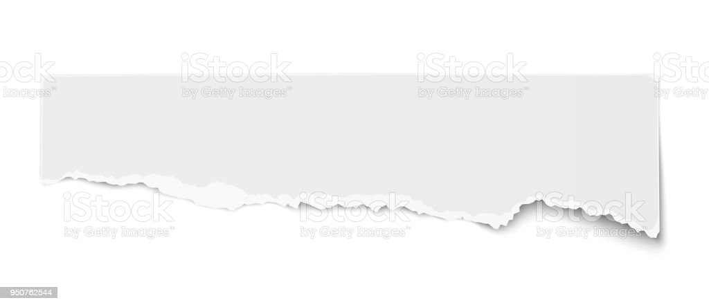 White Vector Oblong Torn Paper Tear Fragment With Soft Shadow