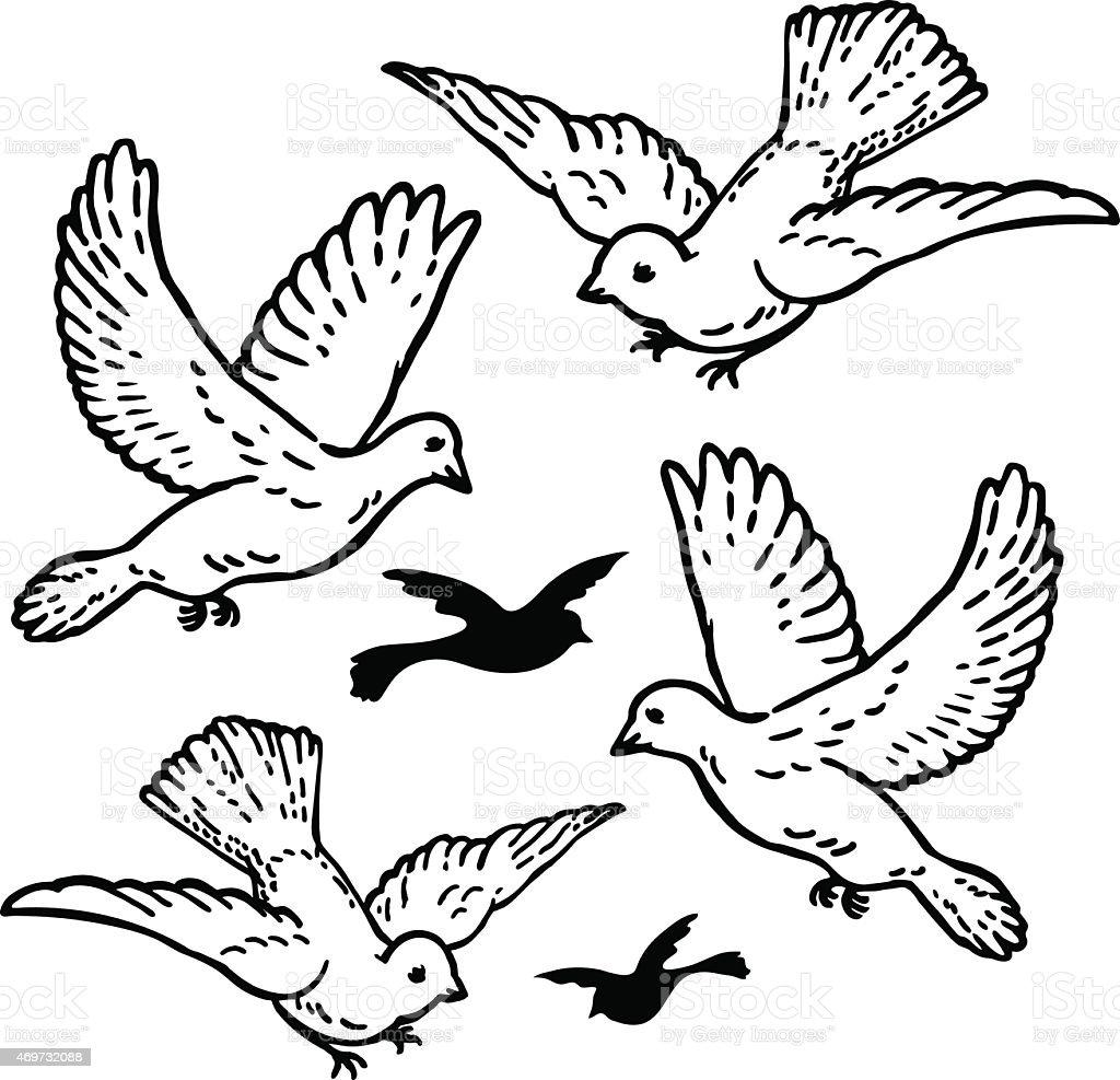 Vetores De Vetor De Casamento Branco Pombas Da Paz Voando E Mais
