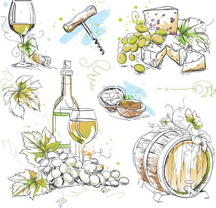 White Wine Tasting Drawings