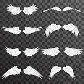 White wings bird animal angel fly 3d realistic design decoration element transparent set background vector illustration
