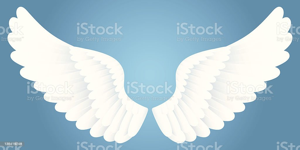White wings. vector art illustration