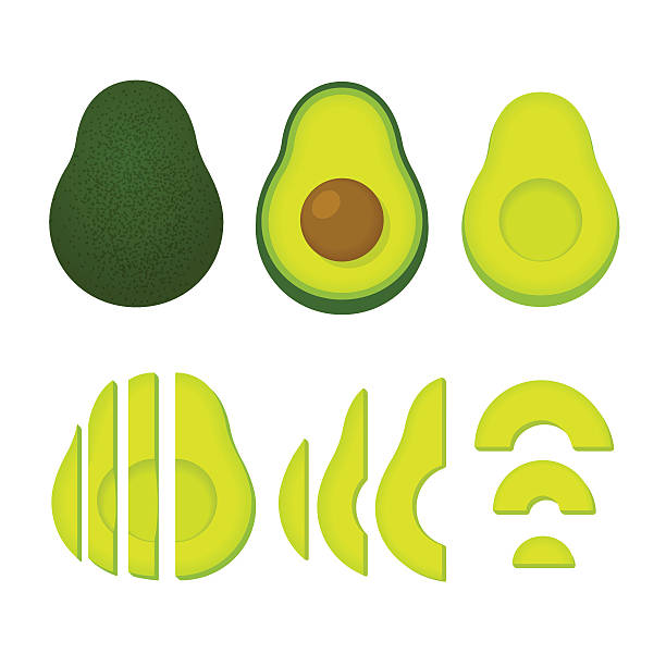 Whole and cut avocado Cooking with avocados vector illustration set. Whole avocado and cut slices isolated on white background. avocado stock illustrations
