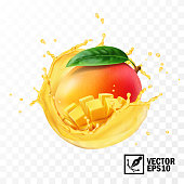 Whole and pieces mango fruit with leaf in a splash of juice with drops, 3D realistic isolated vector, editable handmade mesh