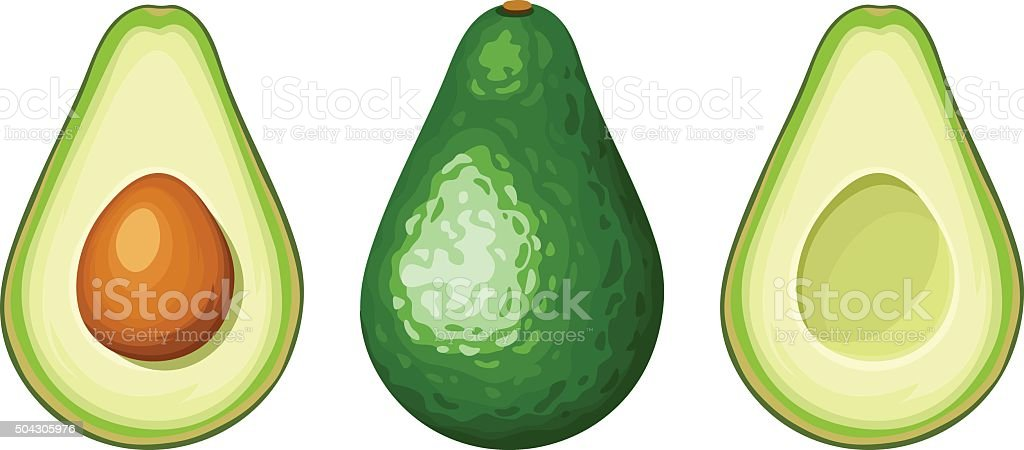 Whole and sliced avocado fruit. Vector illustration. vector art illustration