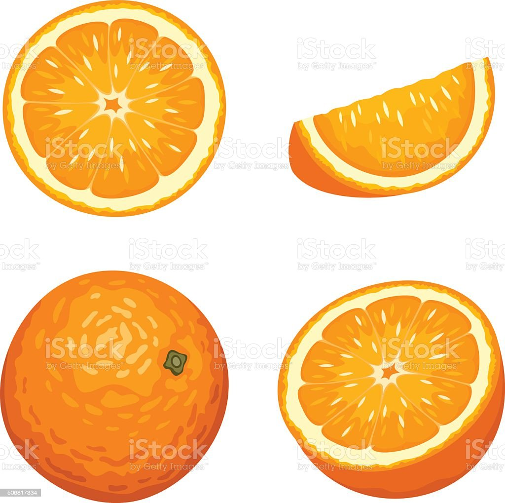Whole and sliced orange fruits isolated on white. Vector illustration.