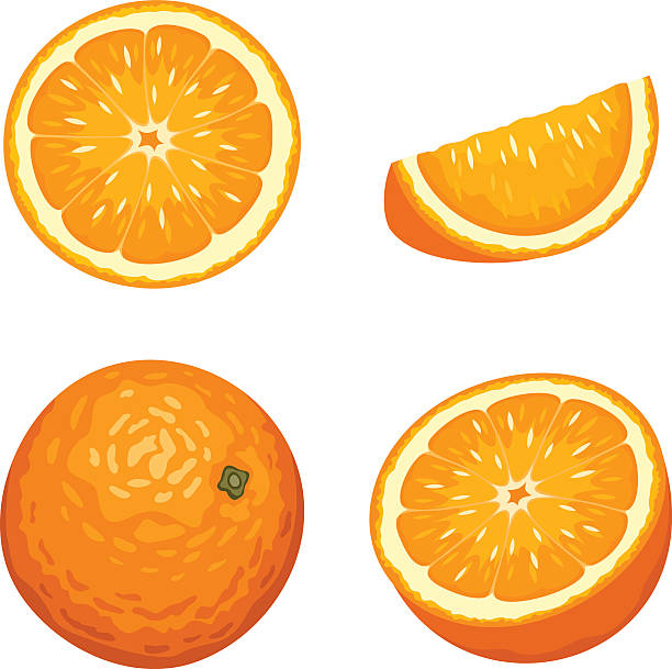whole and sliced orange fruits isolated on white. vector illustration. - orange color stock illustrations