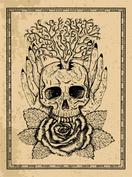 Wiccan emblem with skull, human hands, rose flower and tree in frame vector art illustration