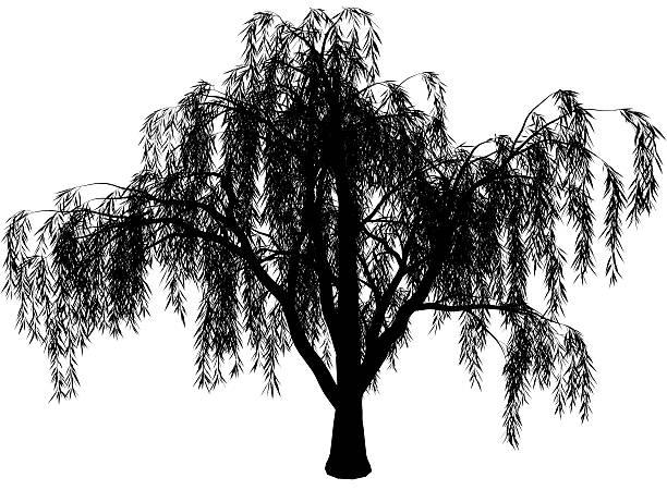 wicker vector art illustration