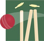 Wickets and Ball