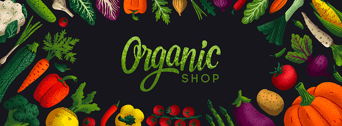 Wide horizontal Healthy eating background. Copy space. Variety of decorative vegetables with grain texture on white background. Farmers market, Organic food poster, cover or banner design. Vector.