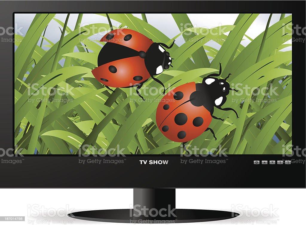 widescreen lcd monitor royalty-free stock vector art