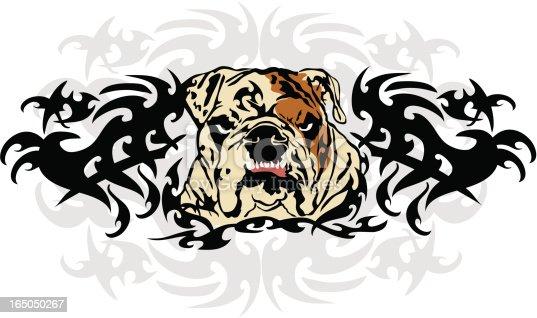istock Wikkid Bulldog 165050267