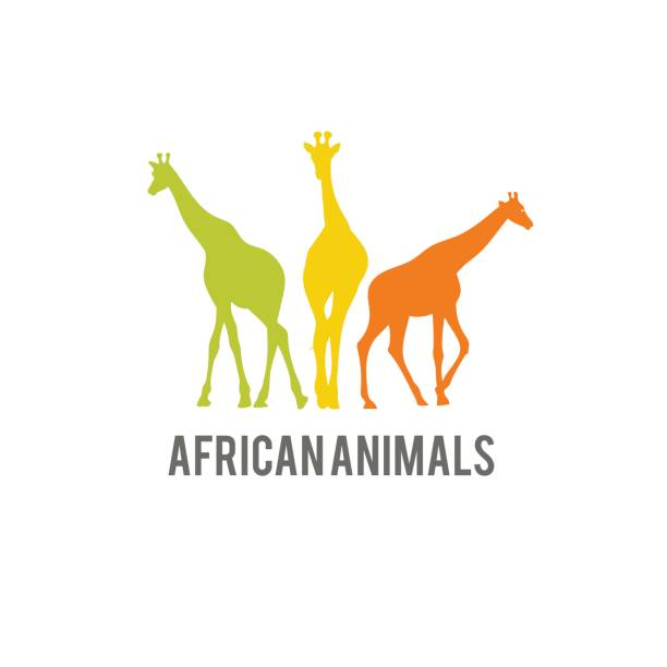wild africa animal stylized icon. giraffe colorful silhouette icon. - giraffe stock illustrations