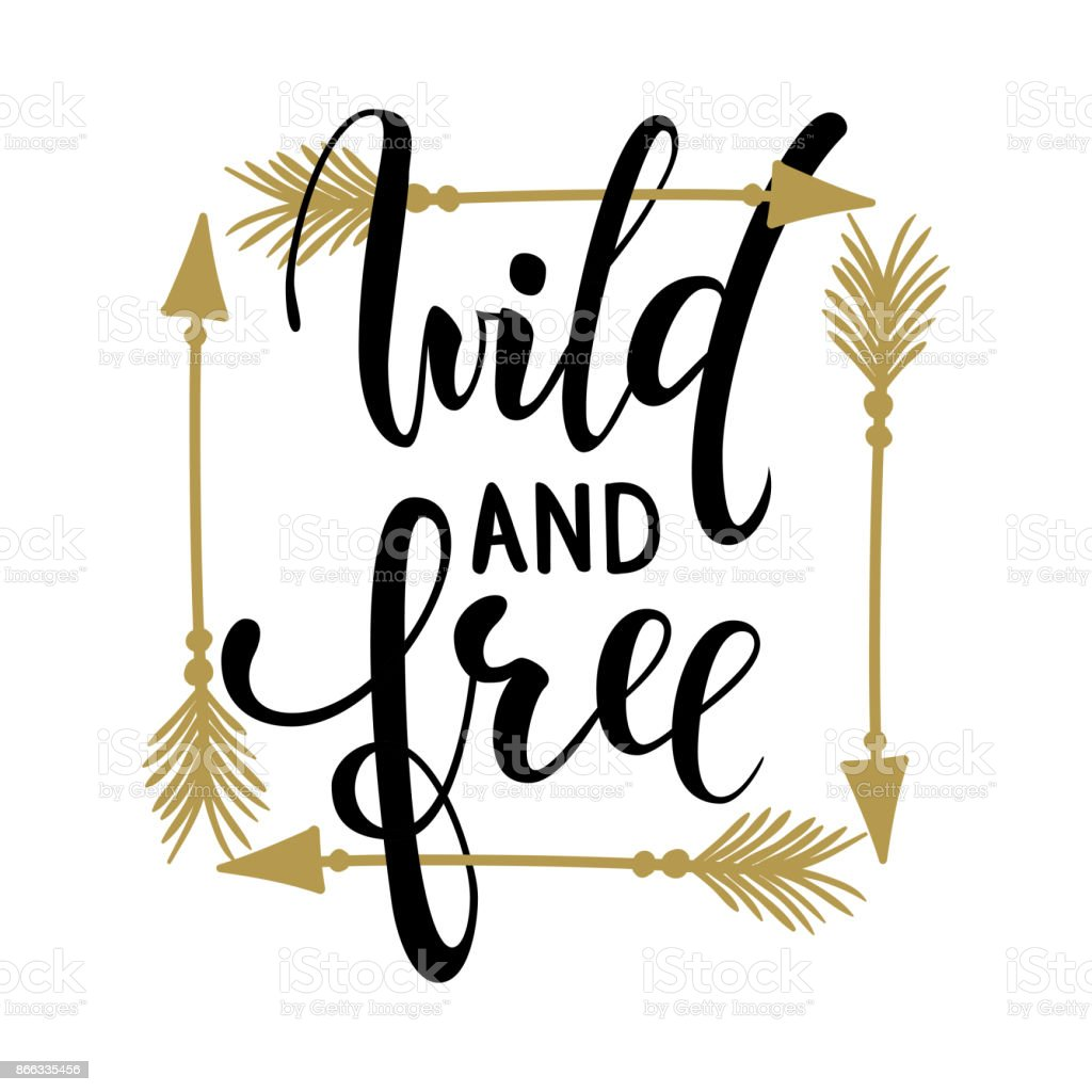 Wild and free brush lettering, inspirational quote about freedom Hand drawn creative calligraphy vector typography card with phrase and arrows Bohemian design elements for prints and posters, t-shirt vector art illustration