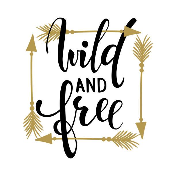 Wild and free brush lettering, inspirational quote about freedom Hand drawn creative calligraphy vector typography card with phrase and arrows Bohemian design elements for prints and posters, t-shirt – artystyczna grafika wektorowa