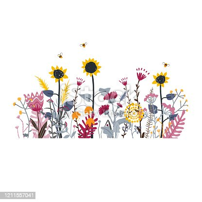Wild and honey meadow flowers scene. Vector nature background with hand drawn wild herbs, flowers and leaves on white. Doodle style floral illustration.