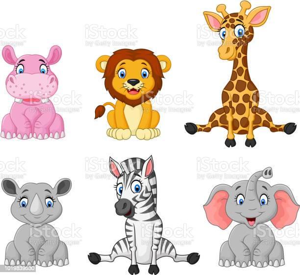 Wild animal cartoon collection set vector id1019839530?b=1&k=6&m=1019839530&s=612x612&h=cbxo4x9dhhefd2jk2ijblnhvffdourjbb9dad13ruhe=