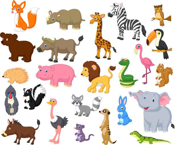 Wild animal cartoon collection Vector illustration of Wild animal cartoon collection skunk stock illustrations
