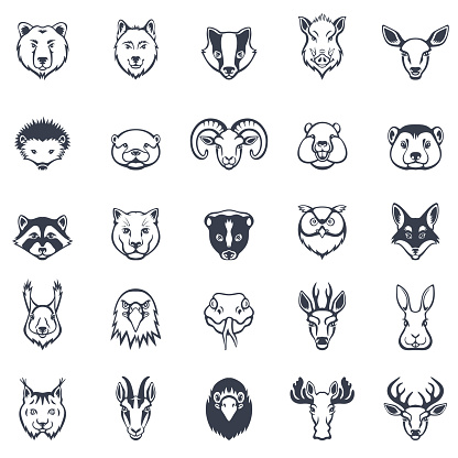 Wild Animal Faces Icon Set