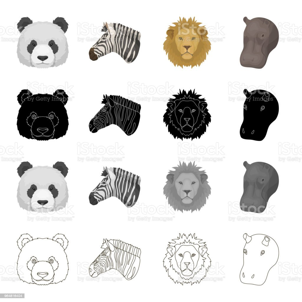 Sauvages Animaux Panda Zebre Lion Hippopotame Animaux Realiste