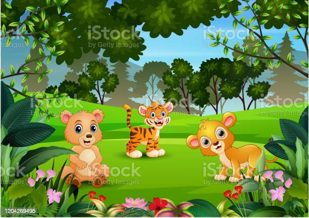 Wild animal playing in the jungle vector id1204269495?b=1&k=6&m=1204269495&s=612x612&h=igskbcwaa4dp7x9jlxhdolakw33l63d7cu3yt57vb0m=