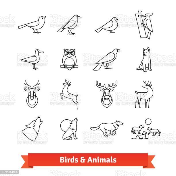 Wild animals and birds thin line art icons set vector id672014592?b=1&k=6&m=672014592&s=612x612&h=2hhy 9grwfn1fbsy2mxpvqz 1nyt1l9enutxn ox9sk=