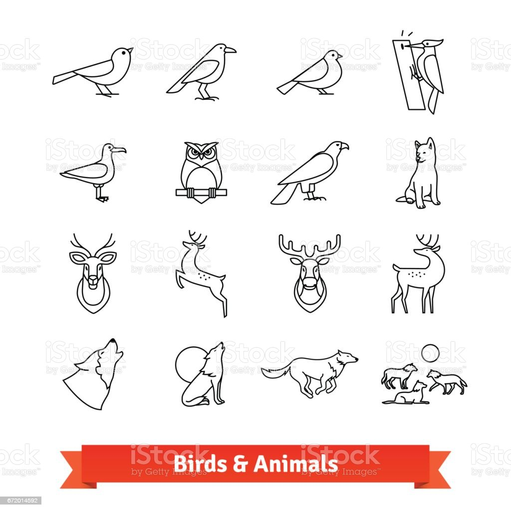 Wild animals and birds thin line art icons set vector art illustration