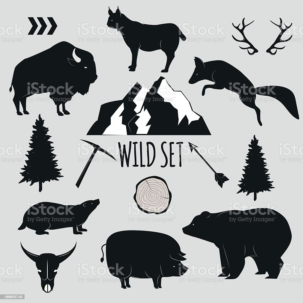 Wild animals and objects set vector art illustration