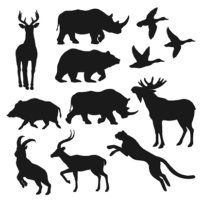 Wild animals black isolated silhouettes