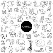 wild animals characters set color book