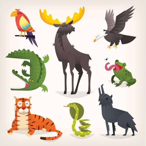 wild animals from savannah, desserts and woods - eagle character stock illustrations, clip art, cartoons, & icons