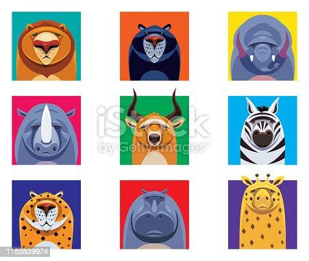istock wild animals heads 1153839974