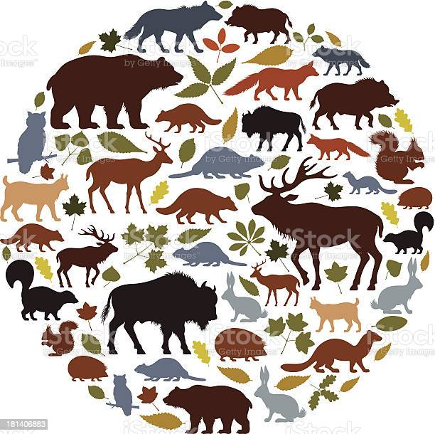 Wild animals icon collage vector id181406883?b=1&k=6&m=181406883&s=612x612&h=sw3qj3dt6r funoye6nevy7yqku9cgqjxid4y7oz0e4=