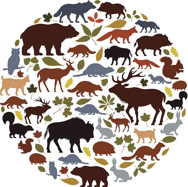 野生動物アイコンカレッジ - 動物点のイラスト素材/クリップアート素材/マンガ素材/アイコン素材