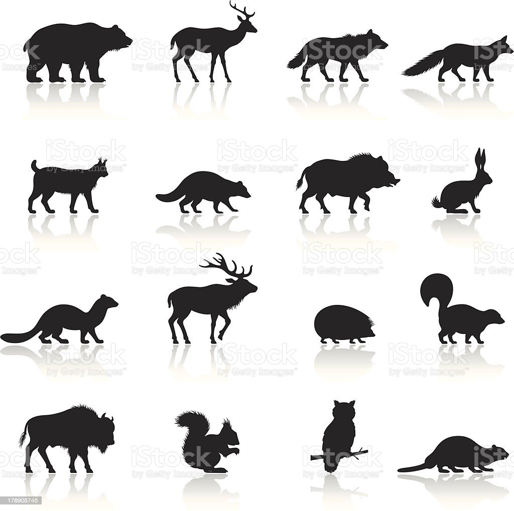 Wild Animals Icon Set vector art illustration