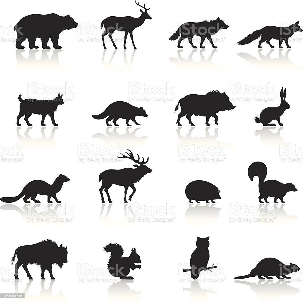 Animais selvagens Conjunto de ícones - ilustração de arte em vetor