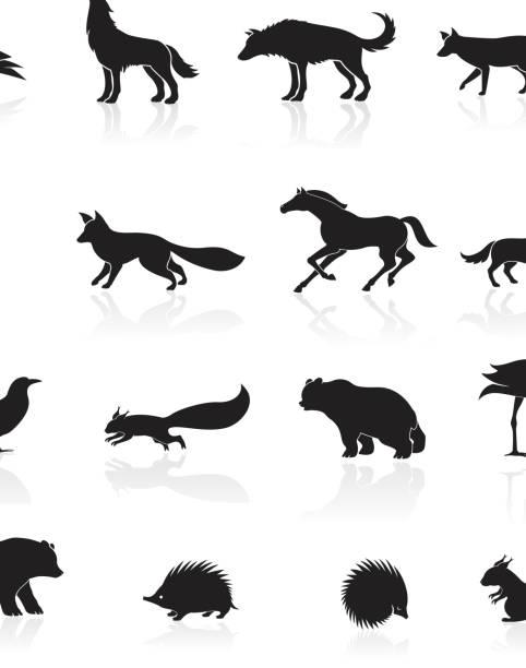 wilde tiere-symbol - igel stock-grafiken, -clipart, -cartoons und -symbole