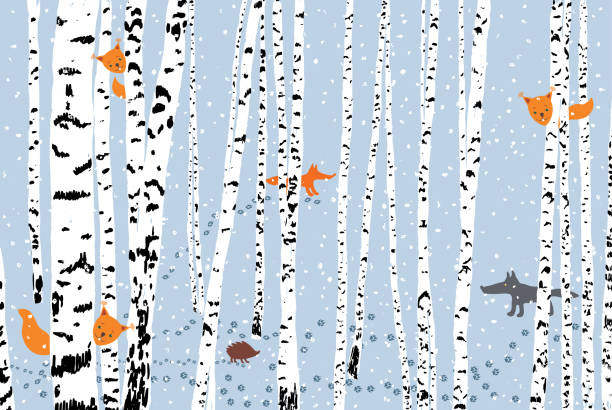 illustrazioni stock, clip art, cartoni animati e icone di tendenza di wild animals in a winter forest - canide