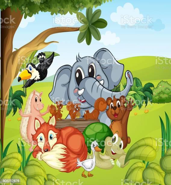 Wild animals in the field vector id505212676?b=1&k=6&m=505212676&s=612x612&h=u1kwxi4gg8rjhcoph8quidvqpiuvkupgtbmccmeysxy=
