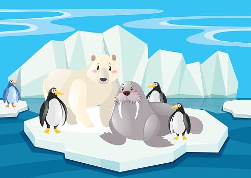 Ilustración de Animales Salvajes En El Polo Norte y más